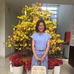 Bà Trần Thị Hải Vân